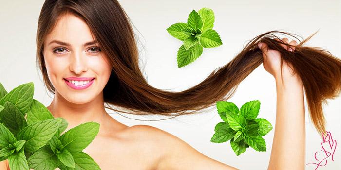 Как использовать настойку перечной мяты для роста волос